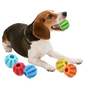 dog-chew-toy2